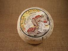 Cheese Caxigon
