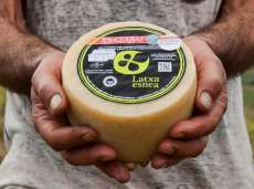 Cheese Latxa Esnea