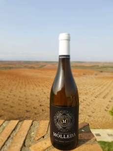 White wine Hacienda Molleda Blanco Joven